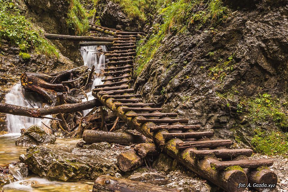 Wąwóz Suchá Belá Drewniane stopnie nad strumieniem