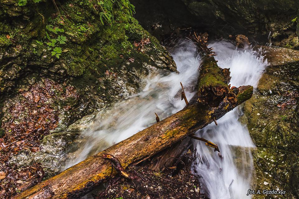 Wąwóz Suchá Belá strumień